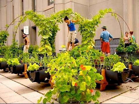 Beautiful and Inspiring Roof Top Garden Designs And Ideas