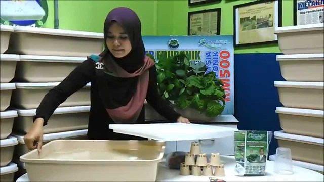KAZZ HIDROPONIK – Aturcara Penanaman Set Hidroponik Domestik (Easy Hydroponics)