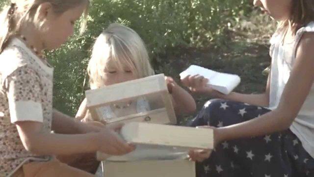 Seedkeepers Kids Seed Saving Kit