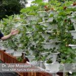 Vertical farm nets tall yields