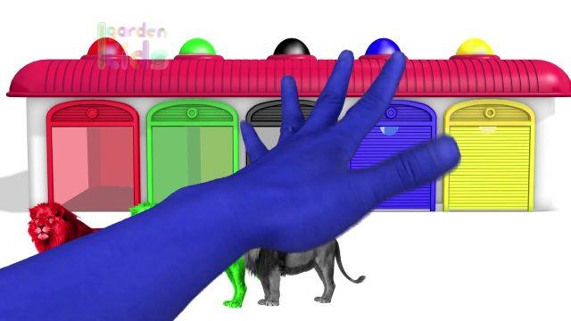 Finger Family w Lion King Colours ! Learn Color Video for kids! Garden Kids TV