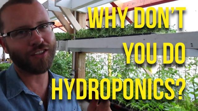 Ask The Urban Farmer — Hydroponics