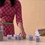 Indoor gardening with hydroponics