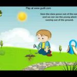 Plants Life Cycle  l Animation  Poems l For The Childrens l