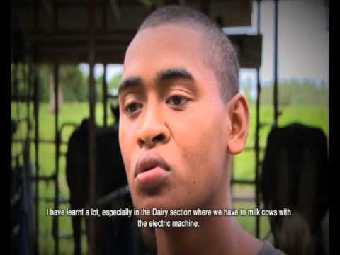 Navuso Agriculture Grooming Fiji's Future Farmers