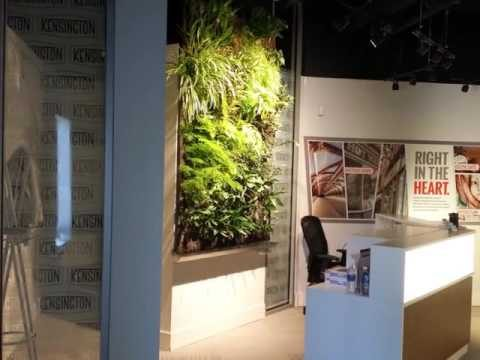 Living and Moss Walls by Greenery Office Interiors Ltd Calgary Alberta.