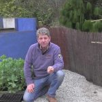 MARCH -THINGS TO SOW IN GREENHOUSE AND GARDEN