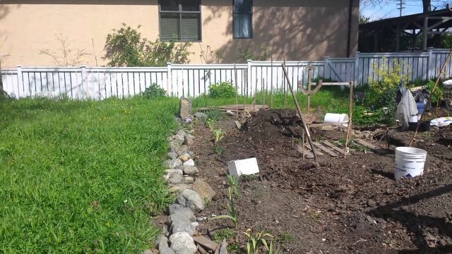 Benefits of gardening on a public/ private plot