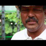 Aquaponics Vertical Farming