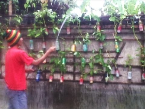 Simple Vertical Garden Ideas | Small Vegetable Garden #1