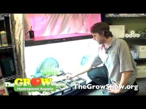 Organic Growing Methods with Hydroponics
