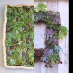 Easy succulent vertical garden ideas