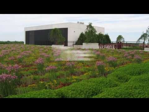 Green Roofing Video by Chicagoland Professional Roofing Contractors  CRCA & CRC