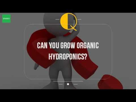 Can You Grow Organic Hydroponics?