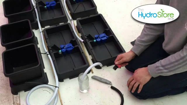 Autopot Easy2Grow Autopot XL Hydroponic System Tutorial, Tips and Tricks