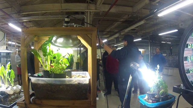 Aquaponics center operates in formerly abandoned shoe warehouse