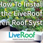 How to Install the LiveRoof Green Roof System