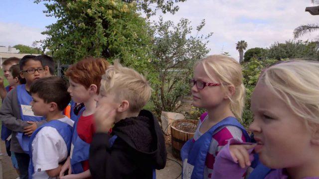 Encinitas School Garden – Up Close and Personal