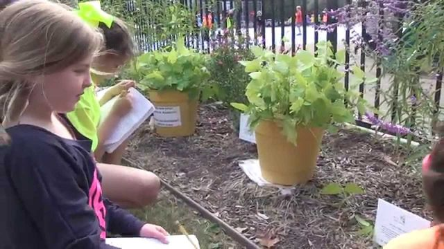 Education blossoms in elementary outdoor learning spaces