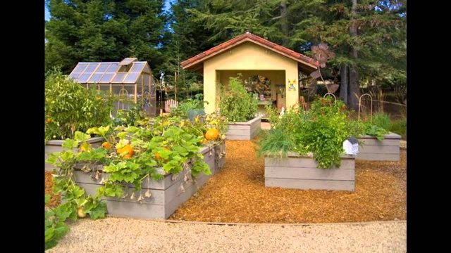 Simple Small raised bed vegetable garden design ideas
