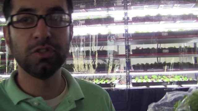 Start An Indoor Farming Company: Packaging (12/12)