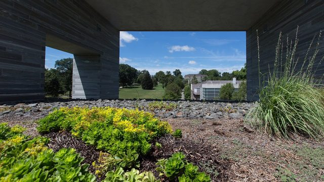 Tour One of Swarthmore's Green Roofs