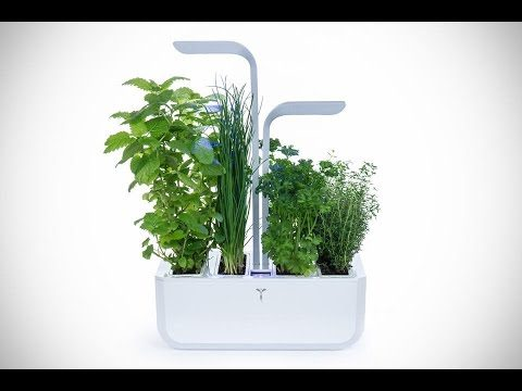 Another 5 Modern Indoor Gardens, The Smart Way To Grow Fresh Herbs And Vegetables #2