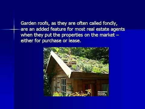 Green Roofing — Environmentally Friendly