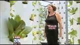 Aeroponic greenhouse produces tons of veggies in air conditioned comfort