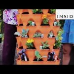 Garden Tower Grows 50 Plants At Once
