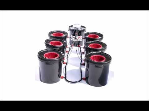 Basement Lighting DWC – R Root Rapid Hydroponics System Set up