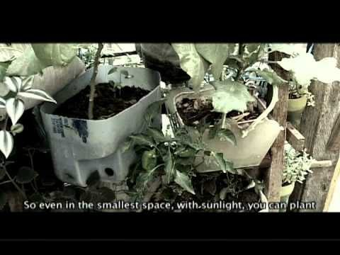 Kraft-Save the Children FRESH Philippines – Urban Gardening (June 2011)