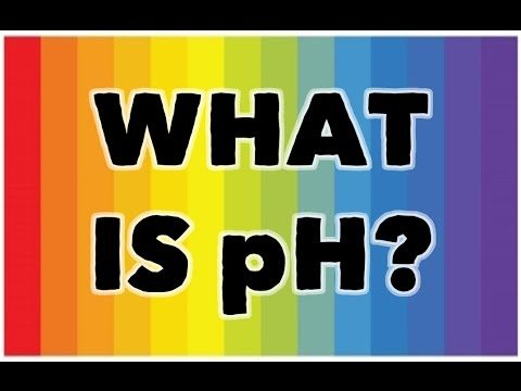 Hydroponics Basics: What Is pH and Why Is It So Important?