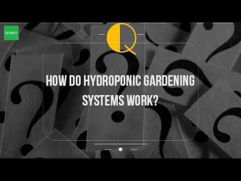 How Do Hydroponic Gardening Systems Work?