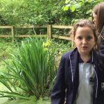 RHS School Gardening Team of the Year 2016 – Gordano School (Finalist)