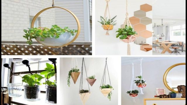 Hanging Wall Planters Indoor | Indoor Vertical Garden | Indoor Garden | 10 | Ideas