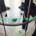 Juice Plus Tower Gardens at Expanding Minds Unlimited – Hydroponic Growing Inside