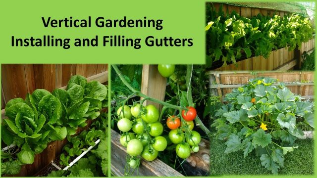 Vertical Gardening – How to Grow Better Vegetables – Installing and Filling Gutters