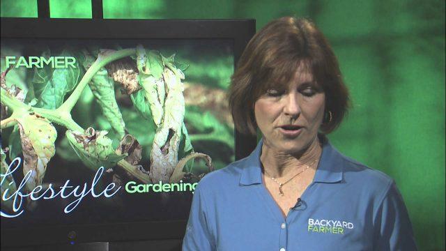 Backyard Farmer: Lifestyle Gardening Season 2-5