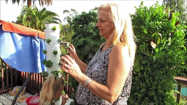 Future Growing® Tower Garden® Farm At Hope4Kids Preschool