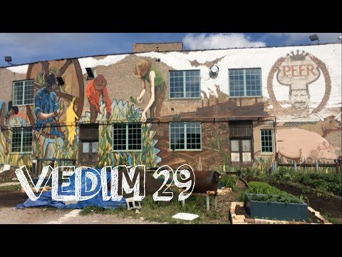 The Plant – Chicago | VEDIM day 29