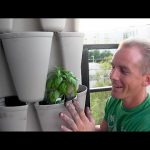 Growing 30 plants in less than 2 Sq Ft with this Vertical Tower Garden | WOW!