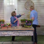Ultimate Innovations AquaSav Vertical Garden Wall Planter on QVC