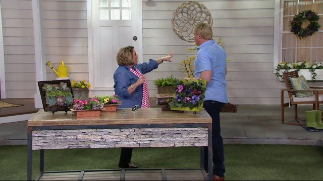 Ultimate Innovations AquaSav Vertical Garden Wall Planter on QVC