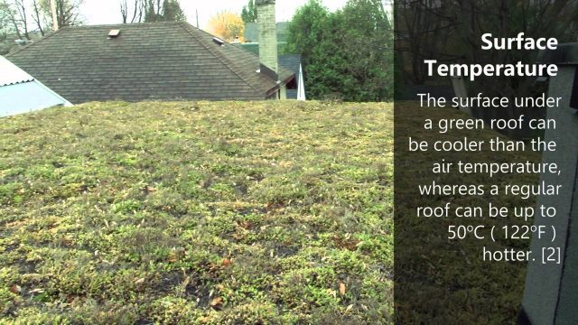 Ottawa Eco District: Green Roofs