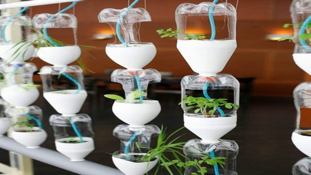 Amazing Plastic bottle Vertical Gardens & Cool Vertical Gardening ideas