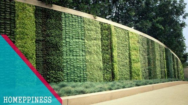 (NEW DESIGN 2017) 20+ Great Vertical Wall Garden Ideas for Modern Home Design