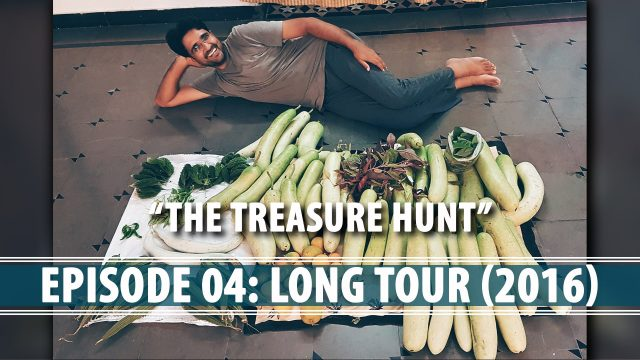 Organic Edible Rooftop Gardening – Long Tour (2016)