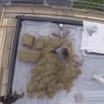 Lightweight meadow green roof installation London