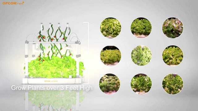 DIY Hydroponics – Indoor Farming and gardening with GrowBox
